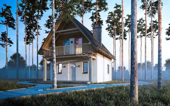 Каркасный дом «Гусь-Хрустальный» 9,6х6,0м