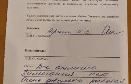 Афонина И.В.